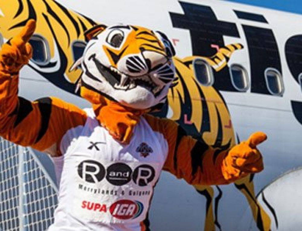 Meet Toby The Friendly Tiger Chatbot Of Tigerair Australia